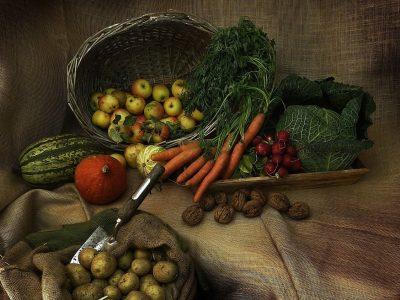 harvest, thanksgiving, pumpkin